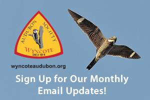 audubon-join-sidebar