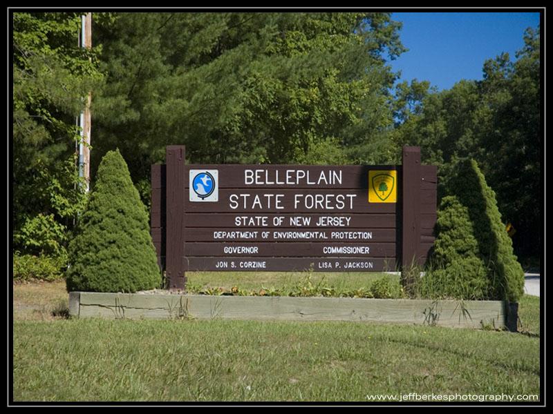 belleplain-state-forest