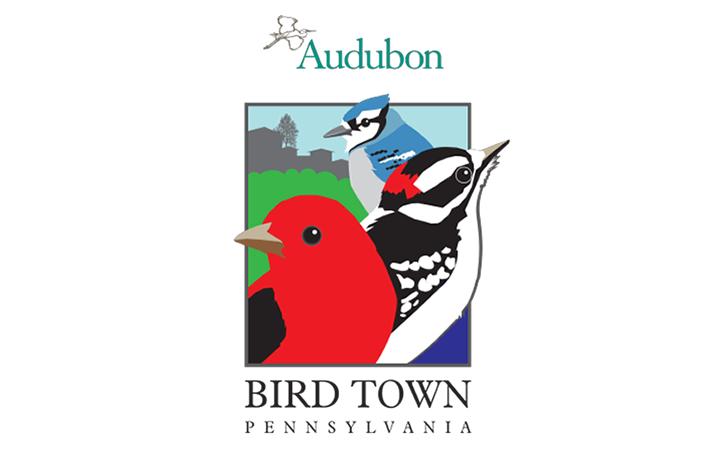 Upcoming Events – Wyncote Audubon Society